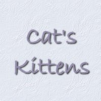 Cat's Kittens - see all the pics of us!